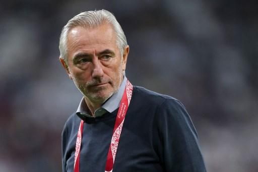 UAE sack Dutch coach Bert van Marwijk