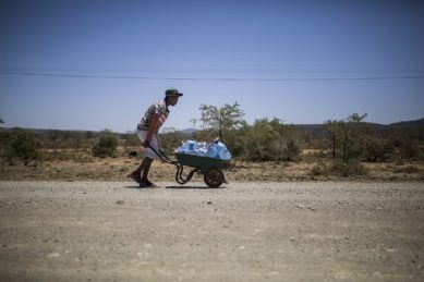 GALLERY: Five years of thirst – SA's Eastern Cape battles brutal drought