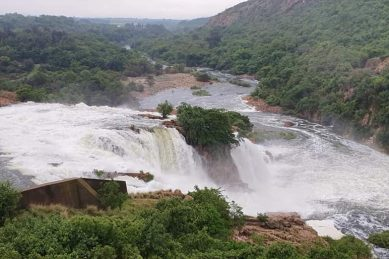 Hartebeespoort man trapped in car dies during floods