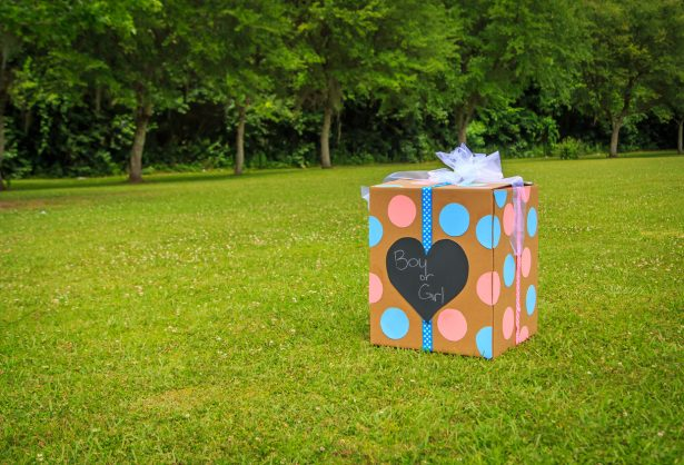 Three over-the-top gender reveals of 2019
