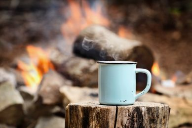Fireside tales: Learning to trust a mate