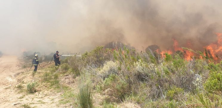 Overberg fire ripped through 14K hectares of vegetation and farm land