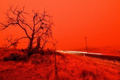 Bushfires bring fears of 'new normal' to life Down Under