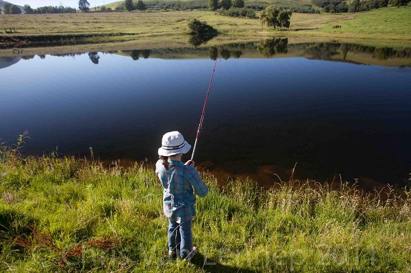 Fishing allowed along with hunting and game drives in Level 3 – department