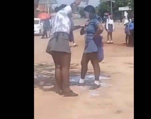 WATCH: Bully suspended after attack video circulates on social media