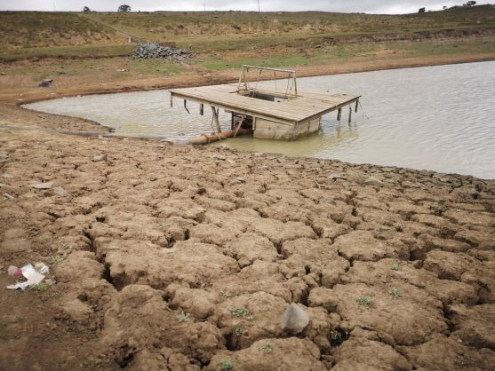 Drought-stricken Northern Cape declared a disaster area