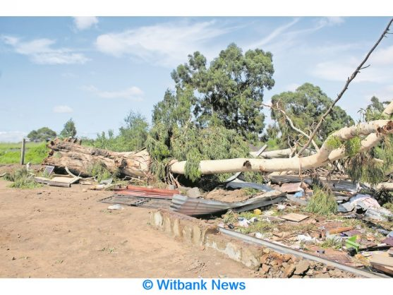 Teen dies after tree falls on shack in Witbank settlement