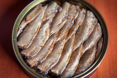 Education department says nutrition programme will temporarily not include pilchards products