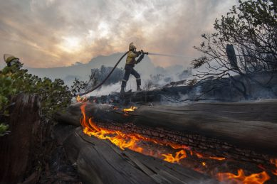 48 hours in pictures, 15 March 2020