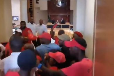 WATCH: Is this woman the reason the officer was attacked at Eastern Cape Legislature?