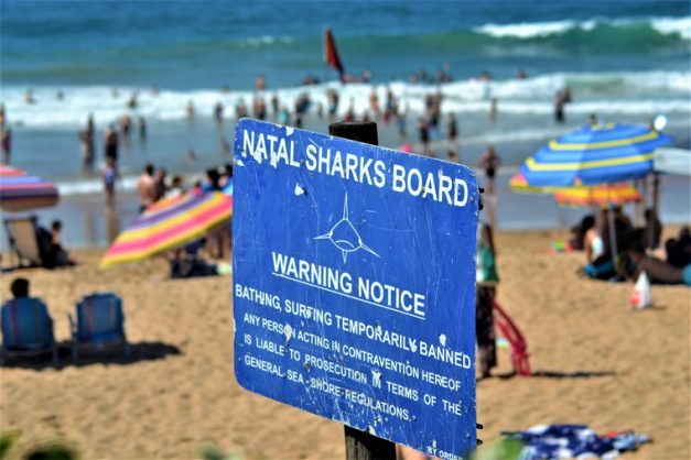 'Leave us alone to enjoy our holiday' – KZN holidaymakers ignore beach closures