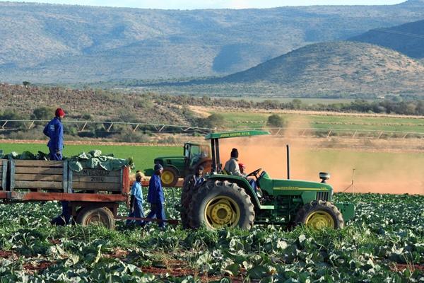 Cops continue to investigate multiple farm attacks in Pretoria