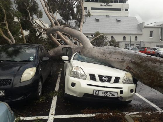 Watch: Cape Town mops up after deluge