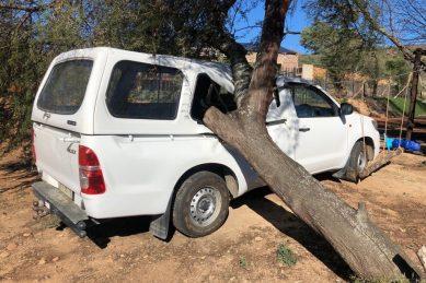 In pictures: Oudtshoorn battered by damaging winds