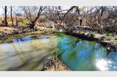 11 tonnes of waste removed from Hennops River