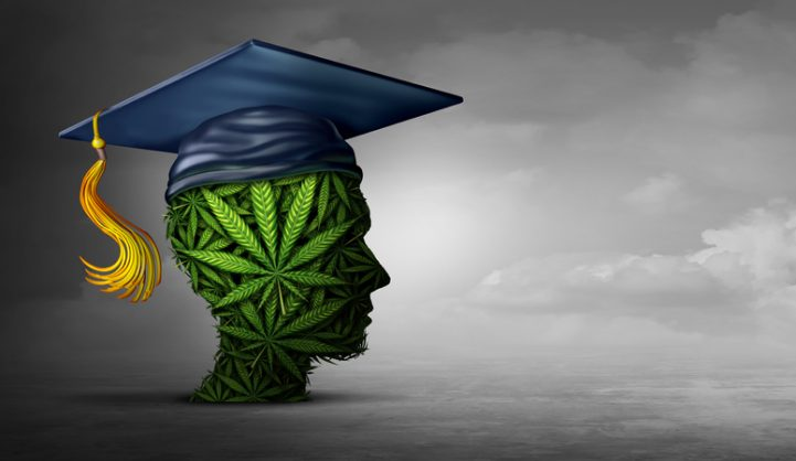 Finally, a higher education for cannabis-based products
