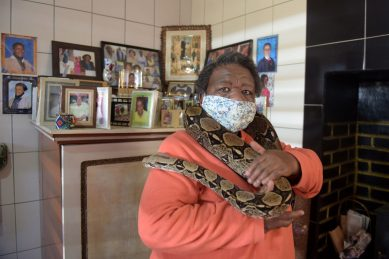 PICS: Lockdown squeezes Soweto 'snake home' tourist attraction