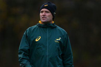 Bok coach Nienaber braces for Lions clash