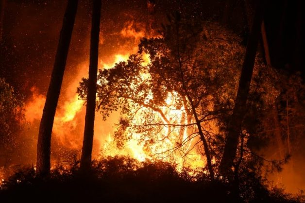 French forest fire consumes home, forces evacuations
