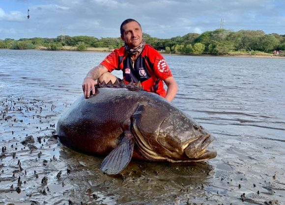 WATCH: Fishing trip makes dramatic turn after 70kg brindle bass takes bait