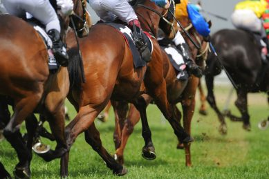Durban racehorse trainer suspended following alleged racist remarks