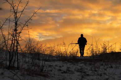 Lockdown regulations threaten total collapse of wildlife sector