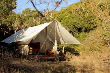 Quatermain's 1920s Safari Camp: A jewel of a place
