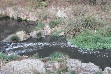 Umbilo River oil spill report reveals dire water quality