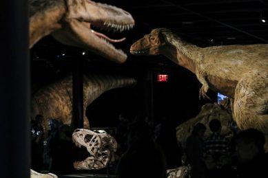 Dinosaurs got cancer too, say scientists