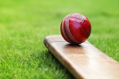 To save the sport, Cricket SA must rid itself of parasites