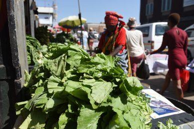 R40m set aside to help informal fruit and vegetable traders