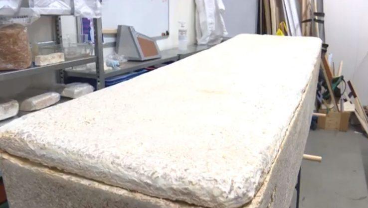 VIDEO: Dutch inventor's mushroom coffins turn bodies into compost