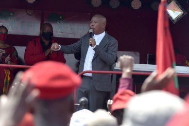 State capture commission wants bank records of EFF's Malema, Shivambu – report