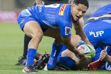 Kolisi praises Stormers after four-try rally beats brave Pumas