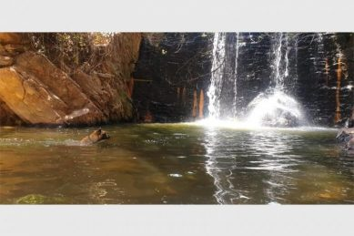Second body in less than three weeks found in 'holy' waters of Roodepoort park