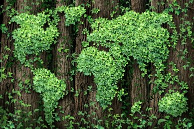 Positioning South Africa for a green recovery