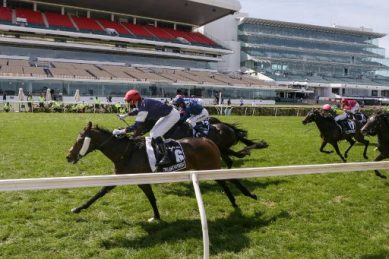 Twilight Payment pays off at 25-1 in memorable Melbourne Cup