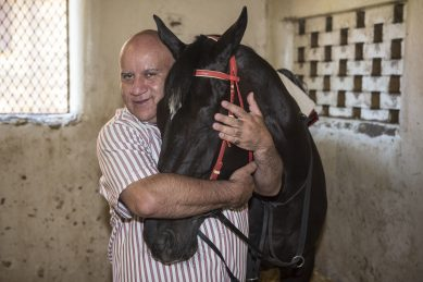 Punters fall for Pack Leader, but Summer Pud still hot