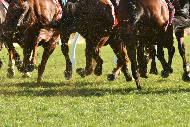 New PA Quickmix and R2.5m Pick 6 in the weekend fare