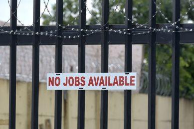 Jobs bloodbath unrelenting: Unemployment rate now highest since 2008