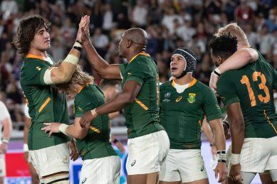 Springbok players