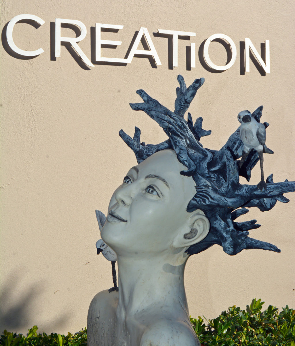 Creation-scaled.