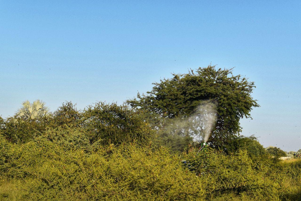 Locust spraying in Namibia