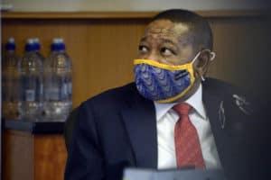 Blade Nzimande EFF fired