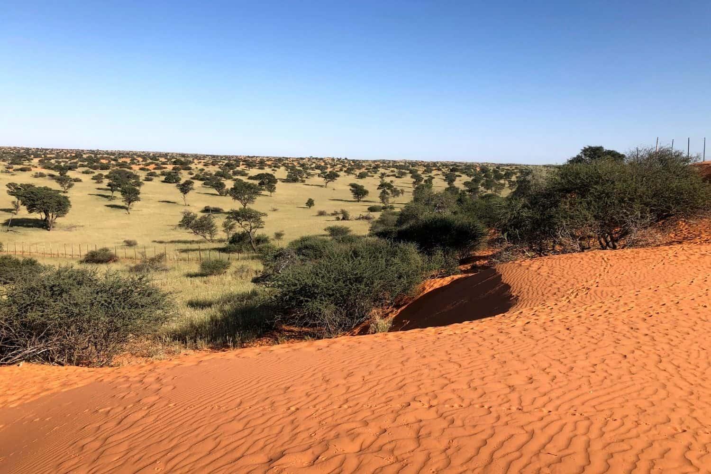 Die Broer Toer Kalahari